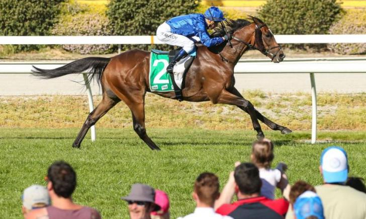 Godolphin Thoroughbred Horseracing News From Around The World