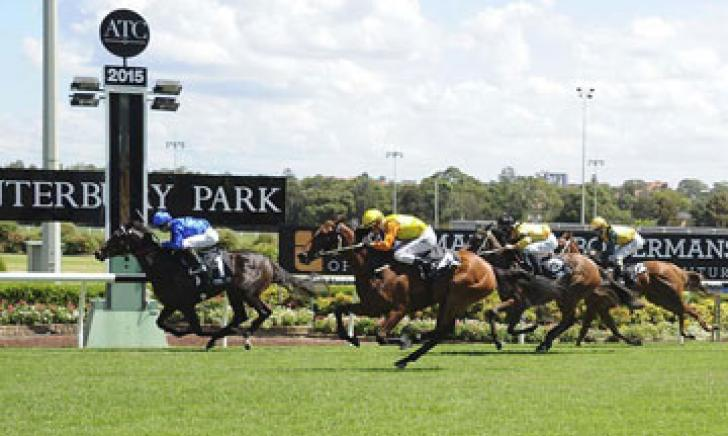 Italy hits the line first at Canterbury Park
